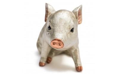 Posh Pig Gold Money Box